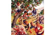 Stealing Apples
