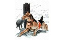 Red Cross Dog
