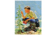 Boy Botanist