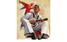 Singing Sailor and Parrot