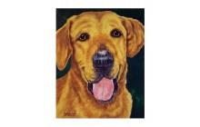 Golden Dog (2)